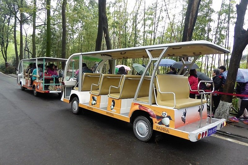 Panda-bus can hold up to 6 persons