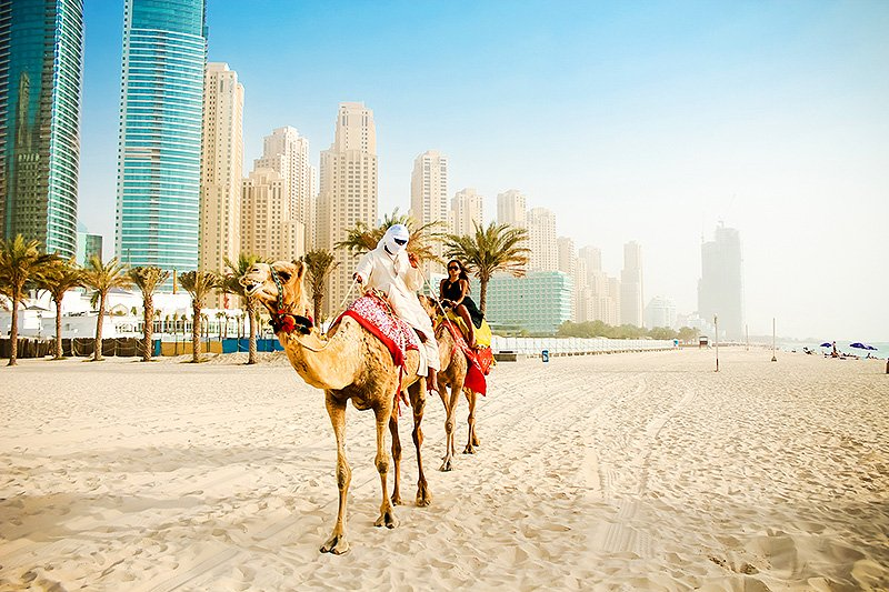 How to ride a camel on marina beach in dubai camel at the beach dubai altavistaventures Choice Image