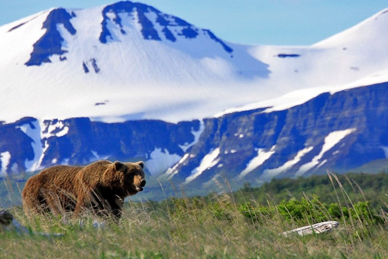 Katmai National Park and Preserve, Anchorage