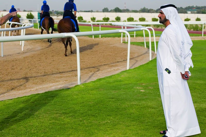 Horses prepare for the Dubai World Cup., Dubai