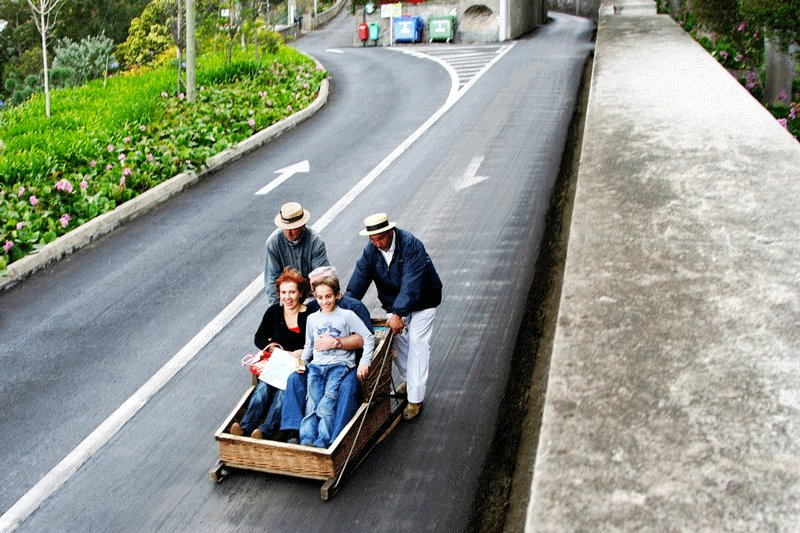 Monte, The wooden sledges could reach the speed of 48 km/hour, Madeira