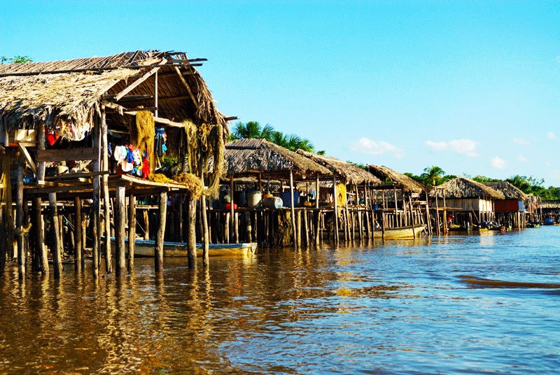 Warao houses are built on the stilt without walls and covered with palm leaves, Maturin