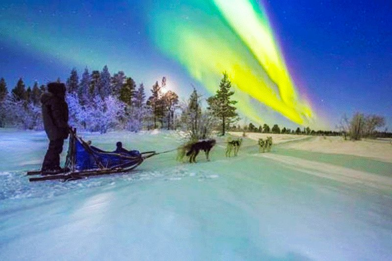 Husky ride to the polar light, Rovaniemi
