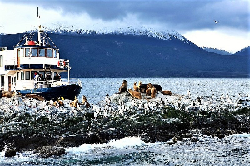 There are seals and penguins greeting you from the channel's shore, Ushuaia