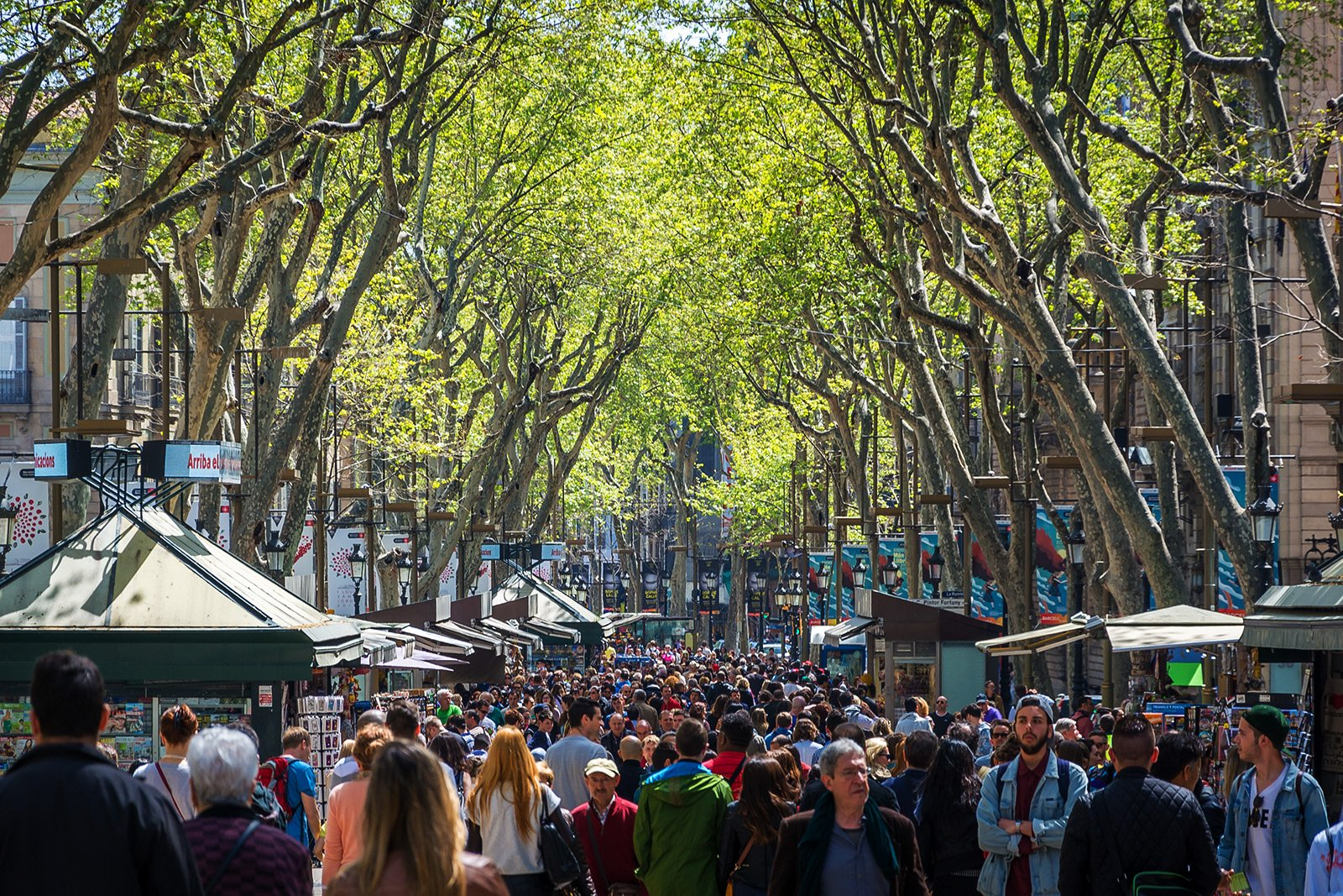 How to take a walk through La Rambla in Barcelona