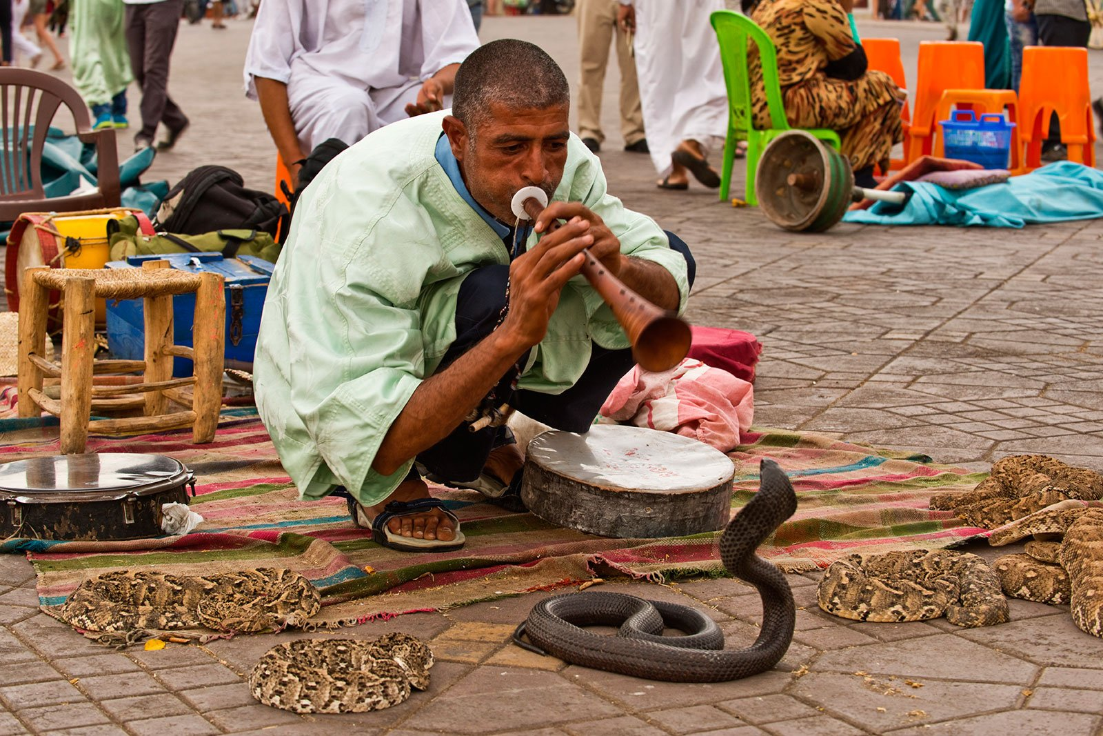 How to see snake charmers in Marrakesh