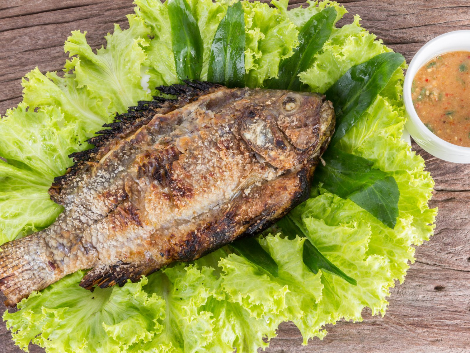 How to try Plah Plow fish in Phuket