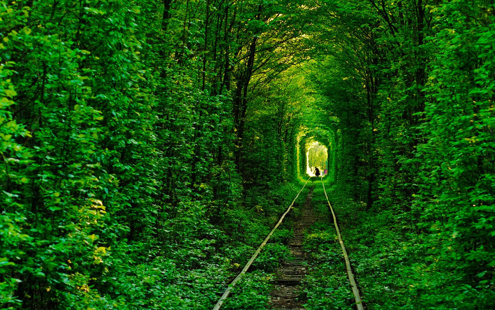 How to walk through Tunnel of Love in Rovno