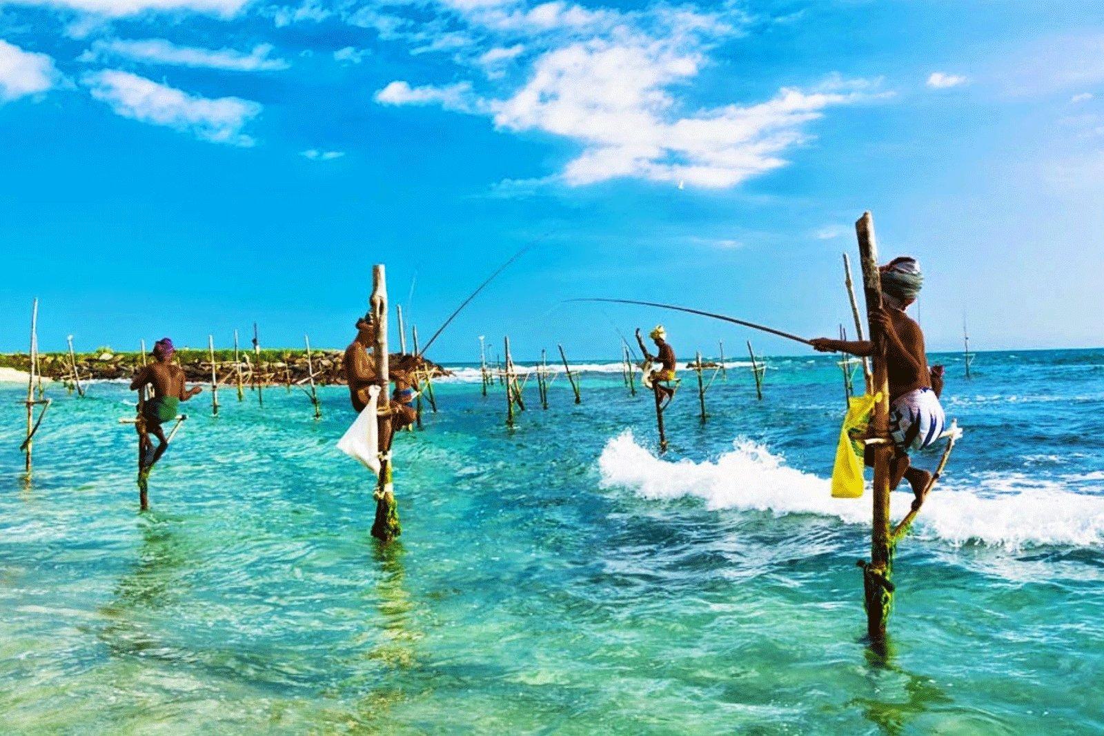 How to go stilt fishing in Galle