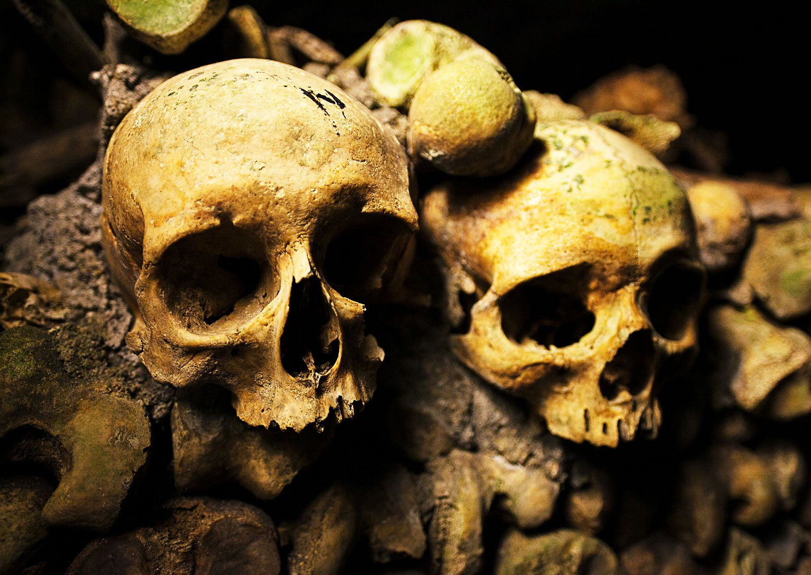 How to see human skulls under ground in Paris
