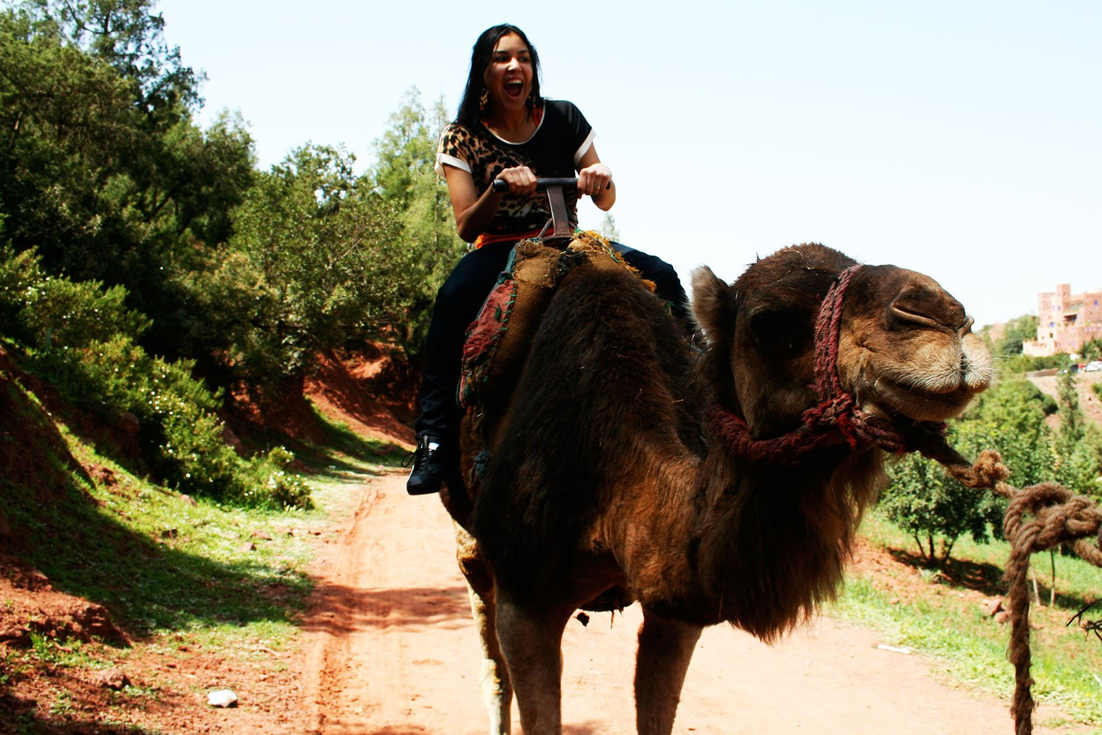 How to take a camel ride in the Atlas Mountains in Marrakesh