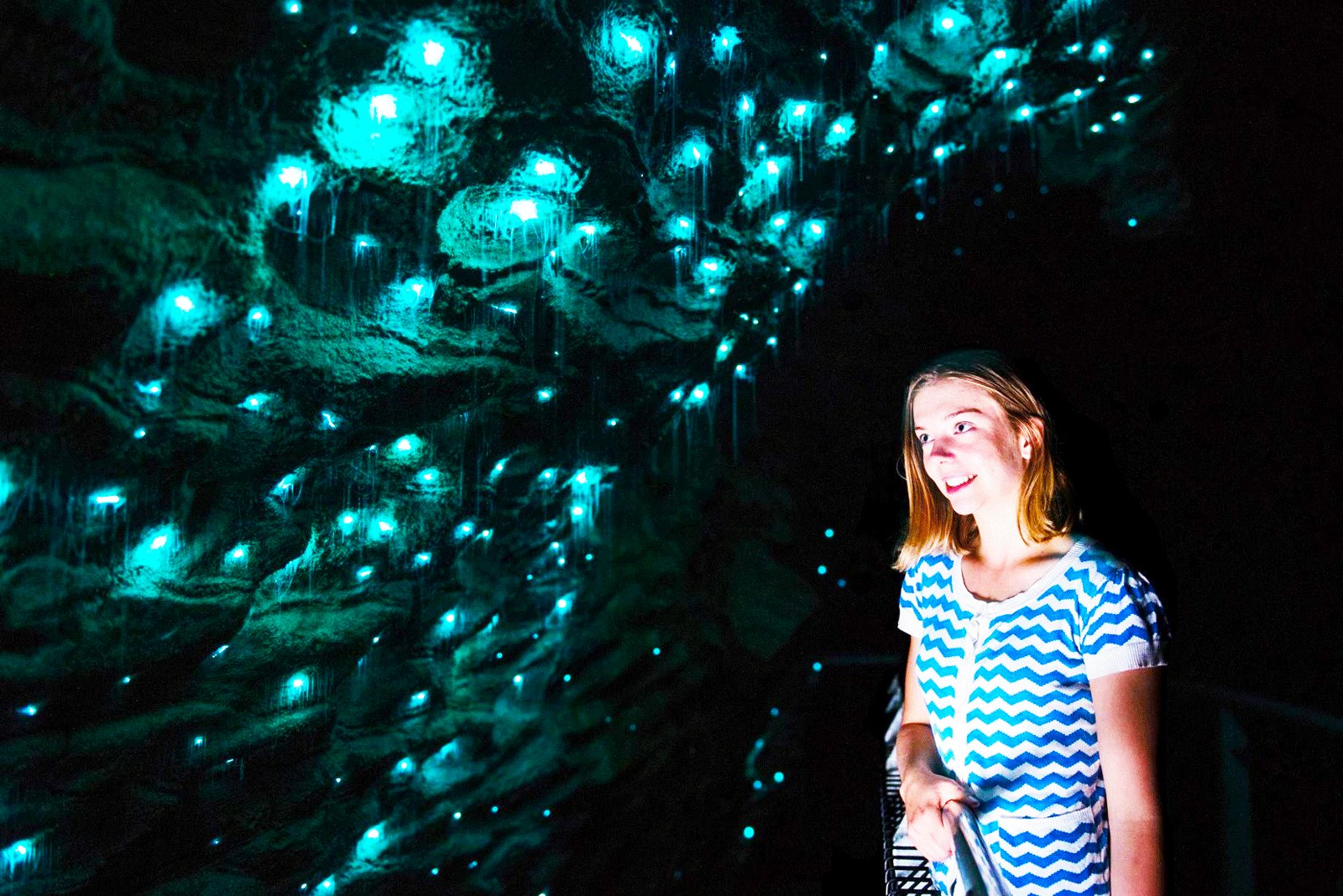 How to get into the glow worm cave in Hamilton