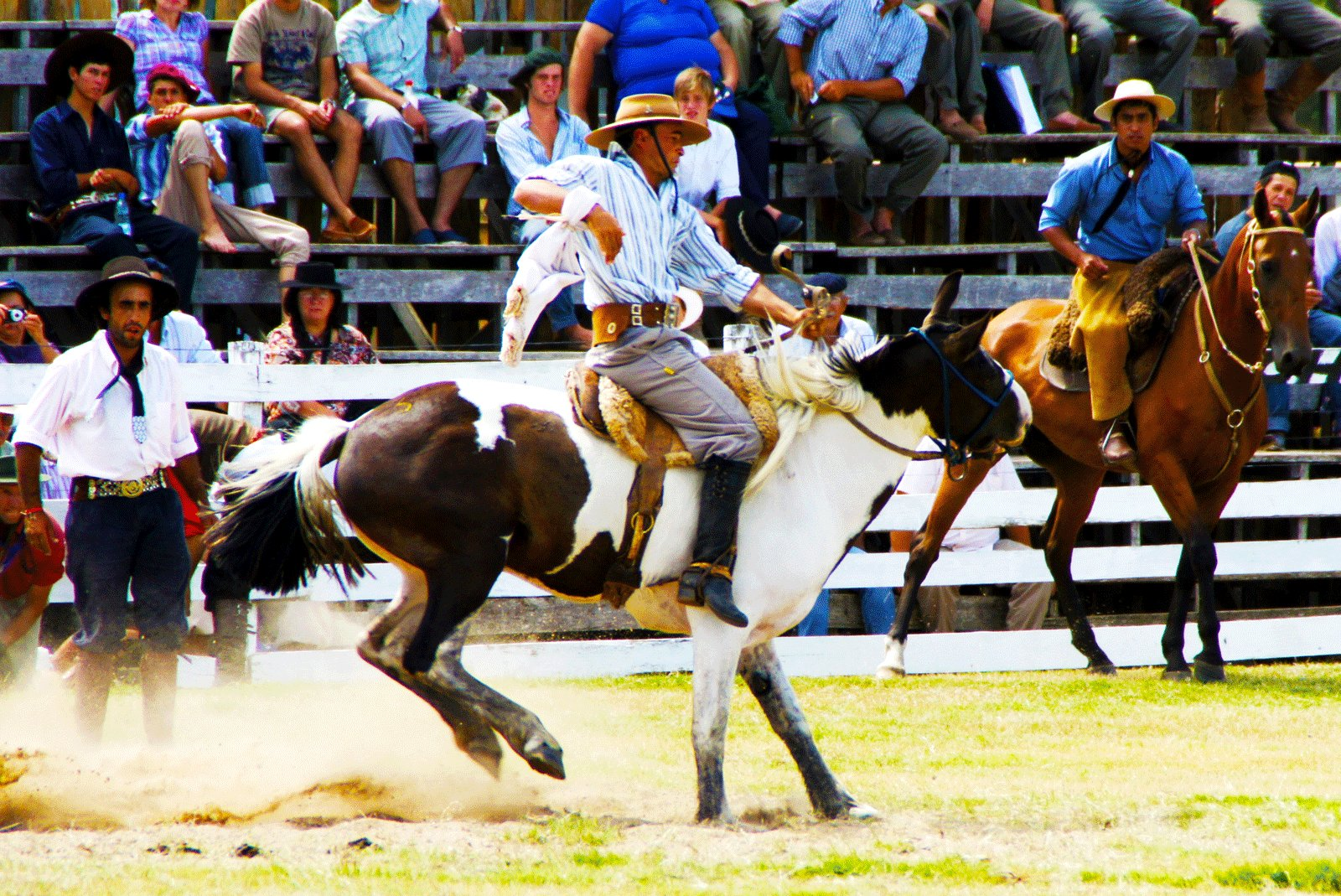 How to watch gaucho rodeo in Tacuarembo