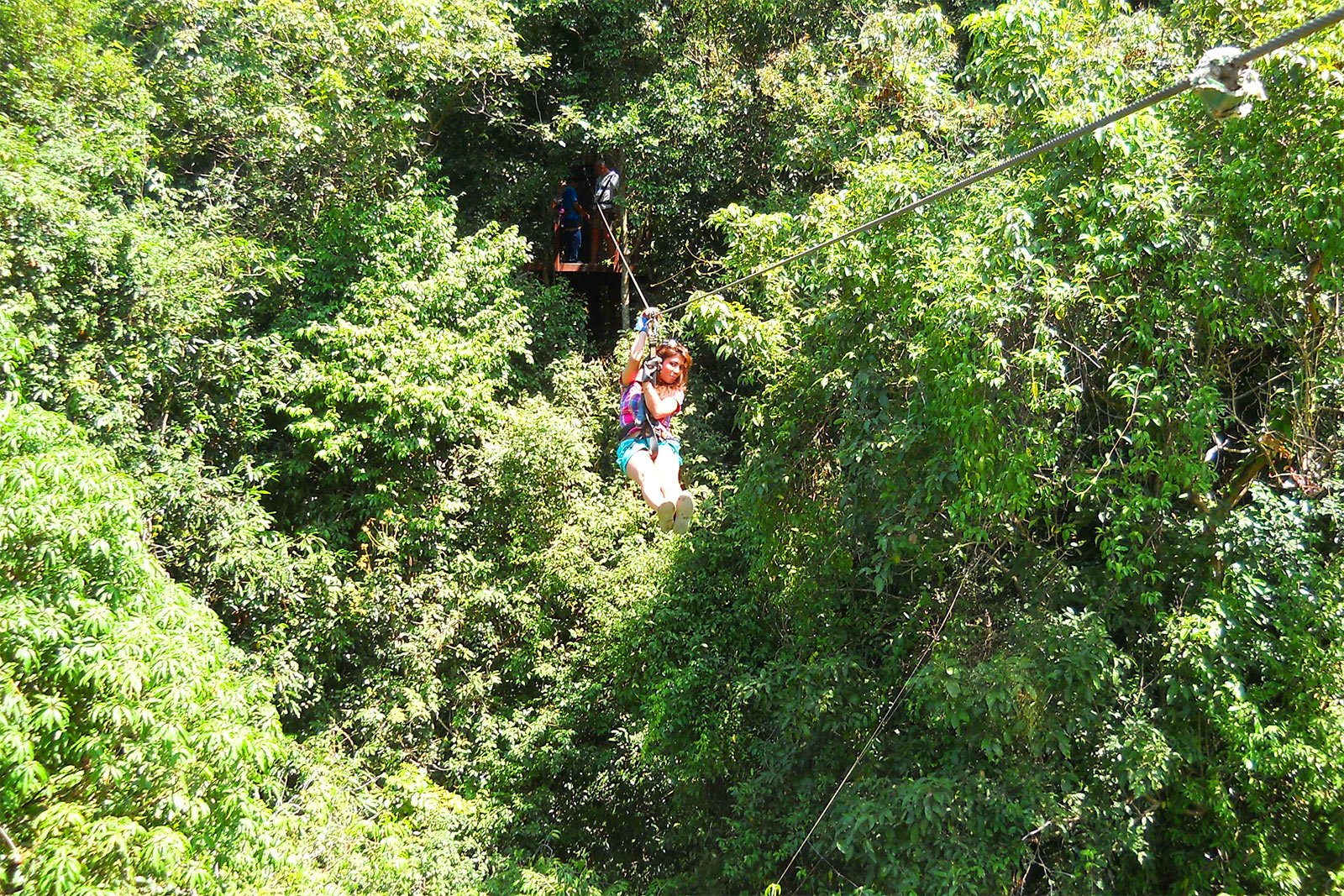 How to fly through the jungle on a cable on Koh Samui