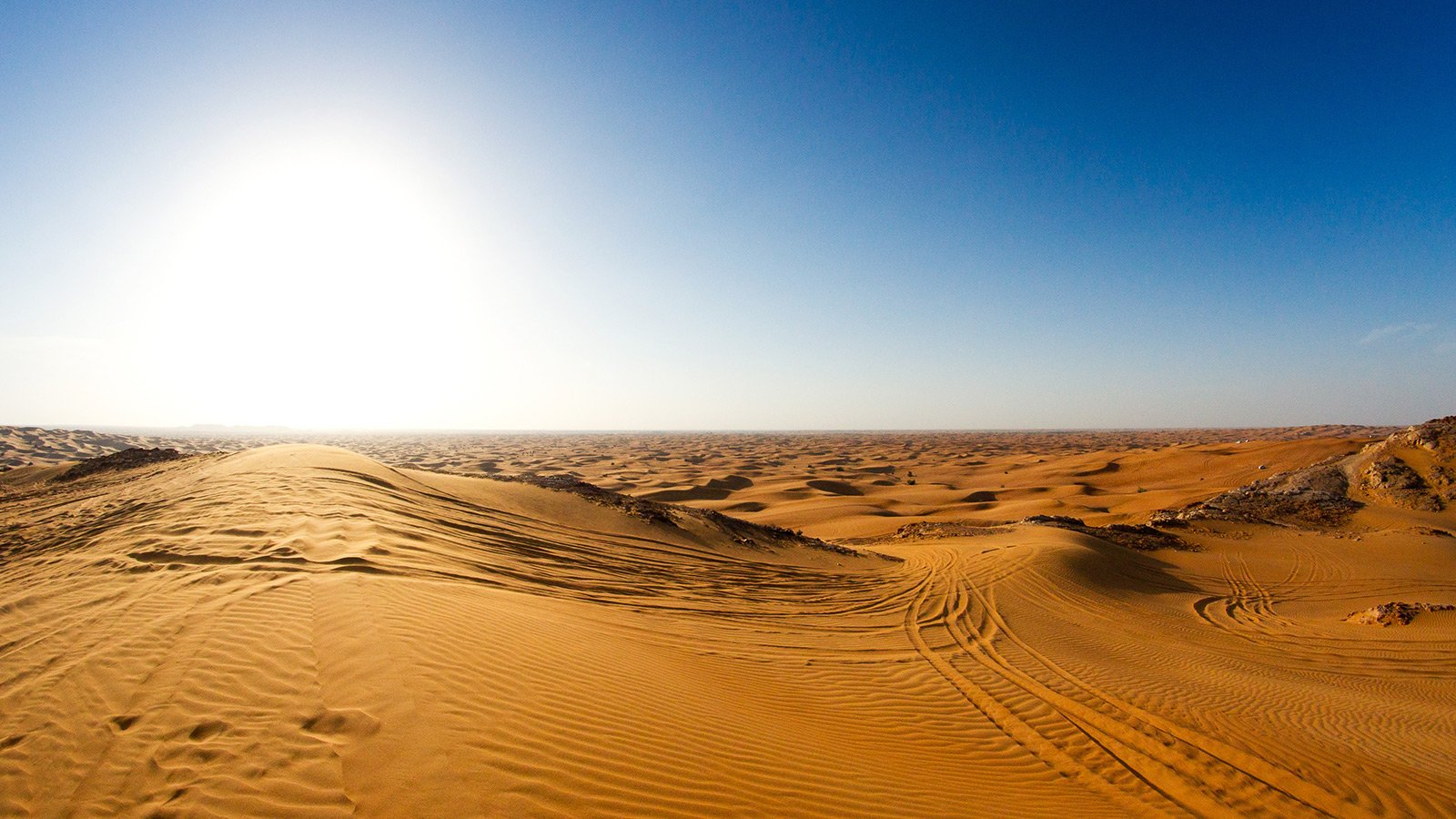 How to visit the Desert Conservation Reserve in Dubai