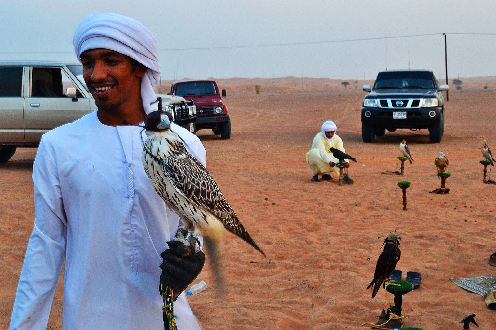 How to attend falconry in Dubai