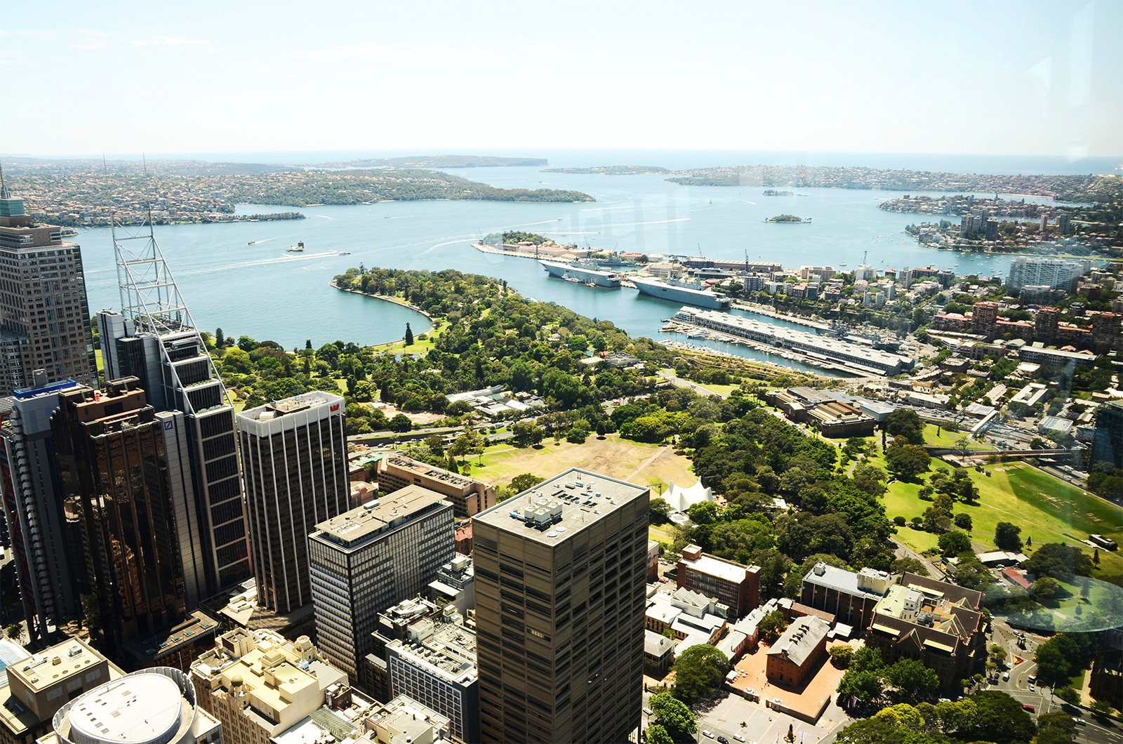 How to come on up to Sydney Tower Eye in Sydney