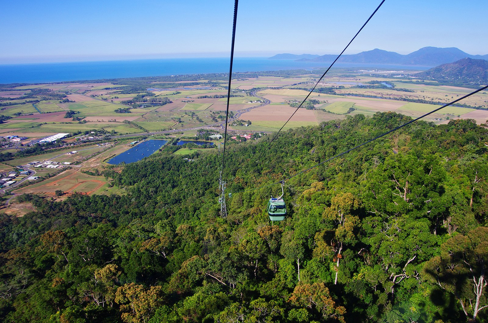 How to take a ride on the cableway over the tropical forest in Cairns
