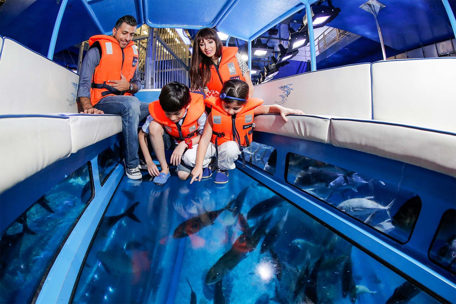 How to take a trip in a glass-bottom boat in Dubai