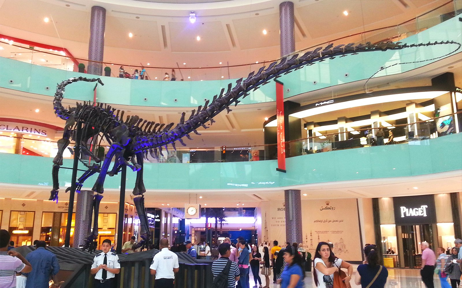 How to see a skeleton of a gigantic 155,000,000-year-old dinosaur in Dubai