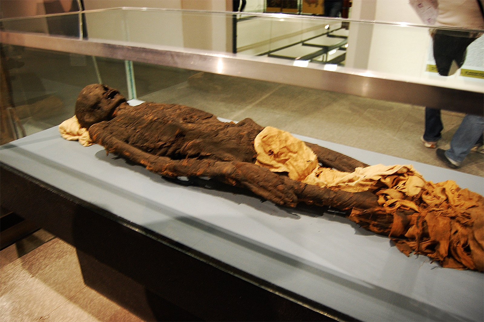 How to see Egyptian mummies in Milan