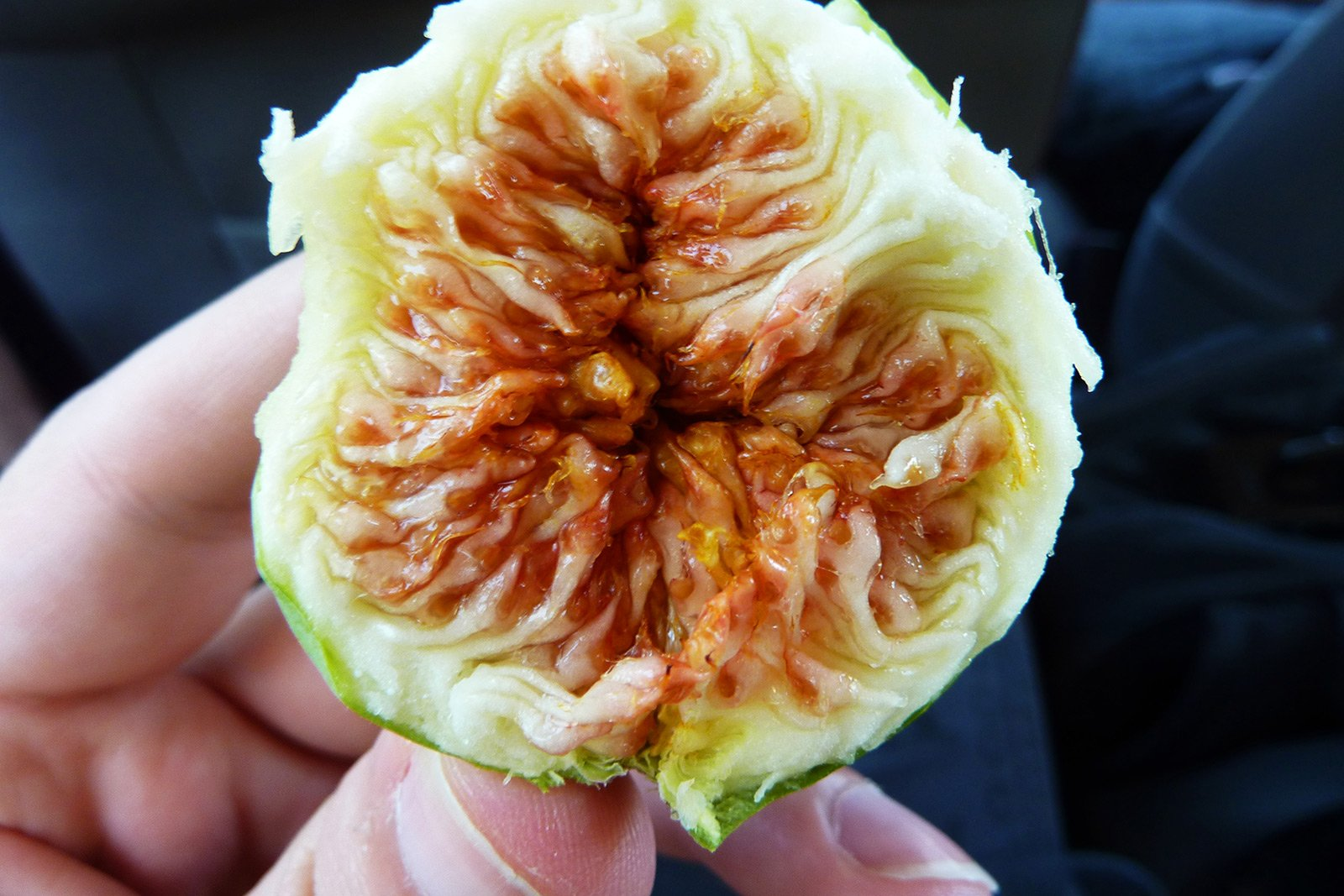 How to eat figs on Crete