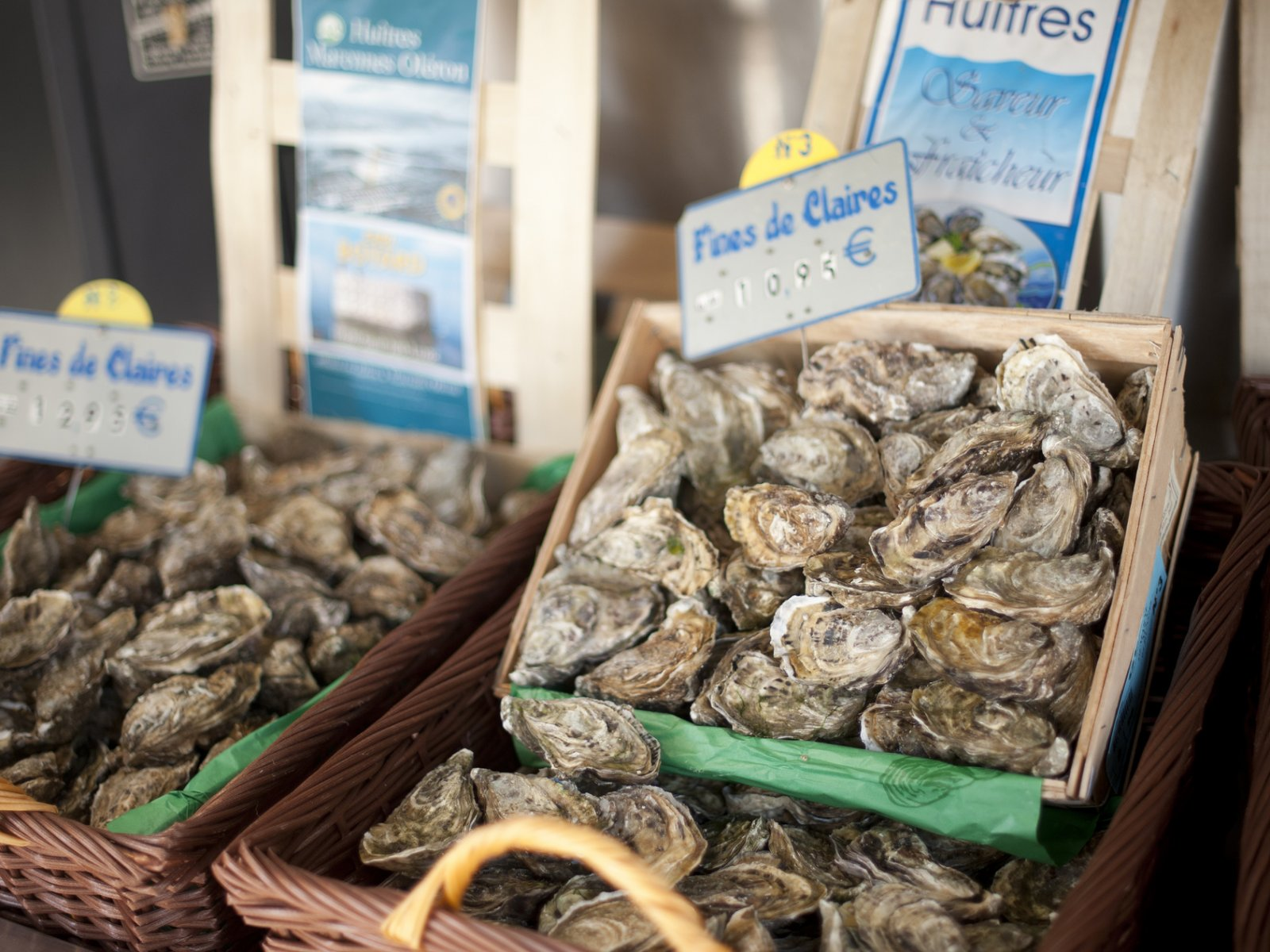How to try oysters in Paris