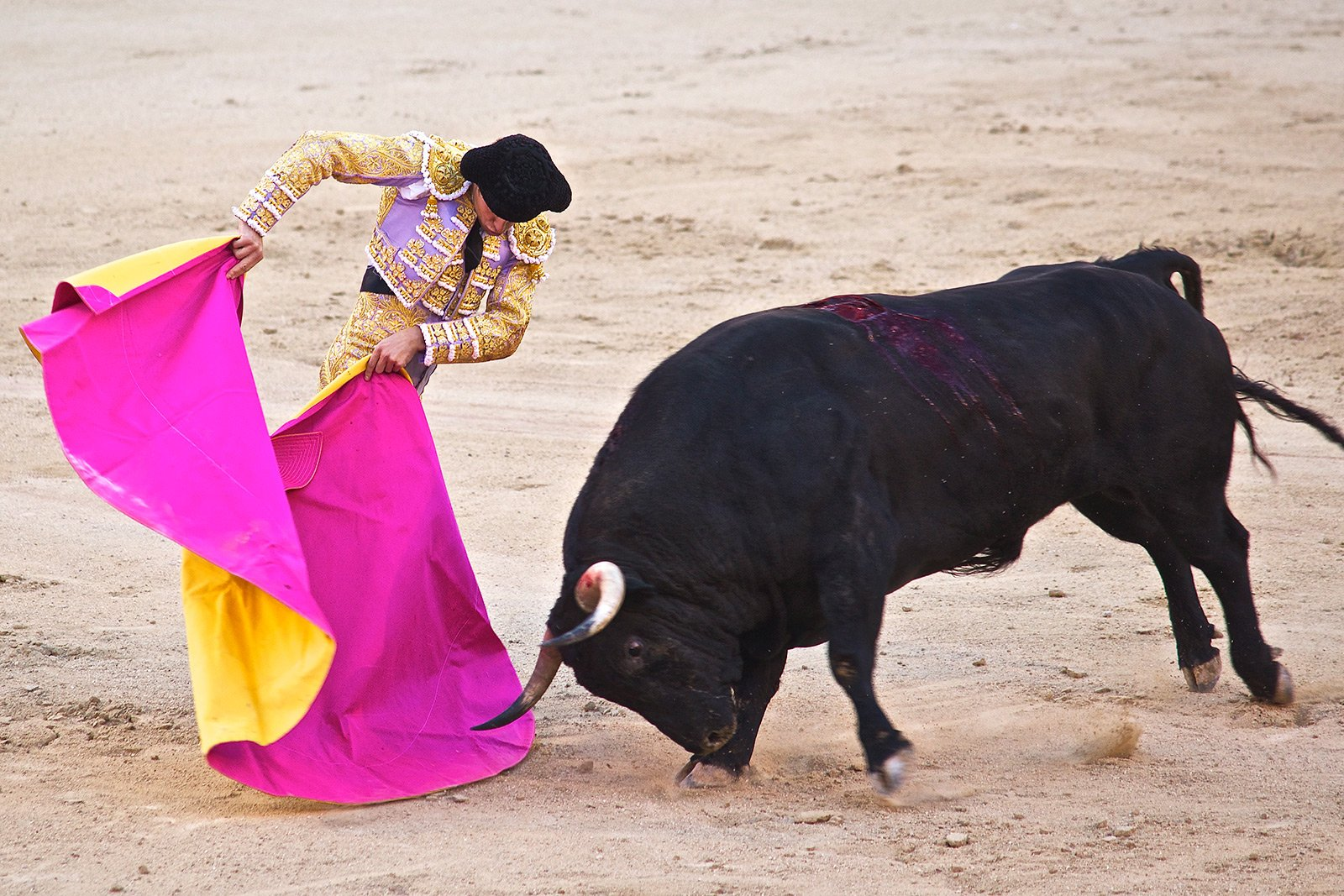 How to see a bullfight in Madrid