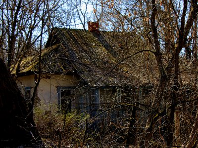 See ghost houses in the exclusion zone in Chernobyl