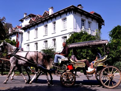 Ride the horse cart in Istanbul