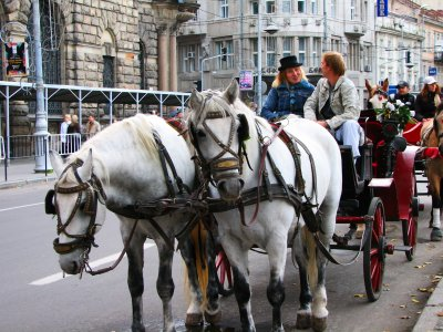 Take a horse carriage ride in Lviv