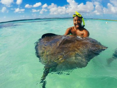 Swim with stingrays on Bora Bora