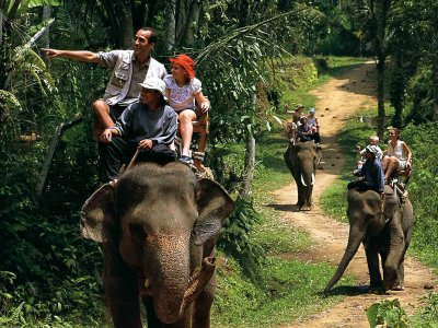 Take an elephant ride in Bali