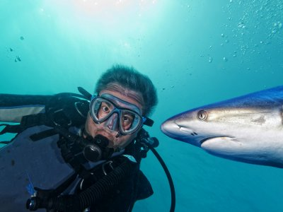 Dive into the aquarium with sharks in Pattaya