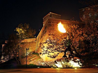 See the Wawel Dragon breathing fire in Krakow