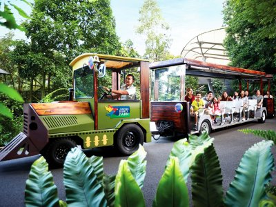 Get around Jurong Bird Park in a tram in Singapore