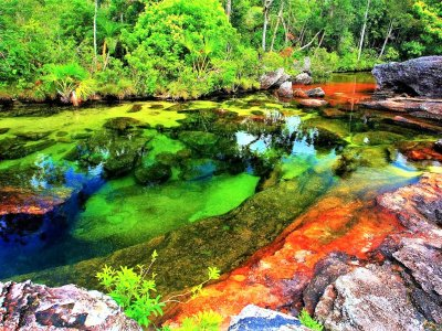 Take a bath in the River of Five Colors in Bogota