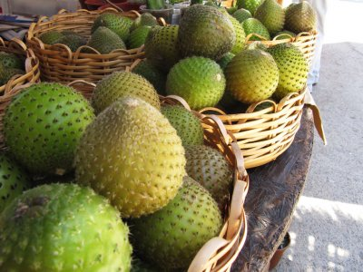 Try cactus fruit copao in Vicuna