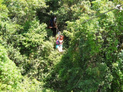 Fly through the jungle on a cable on Koh Samui