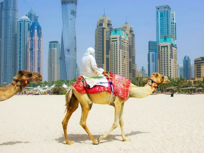 Ride a camel on Marina Beach in Dubai