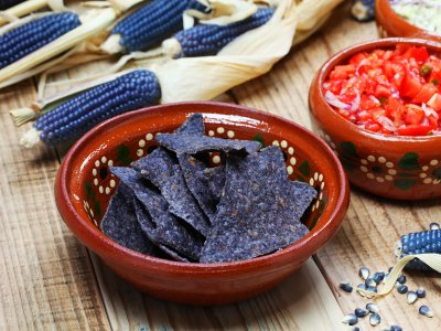 Taste blue corn tortilla in Mexico City