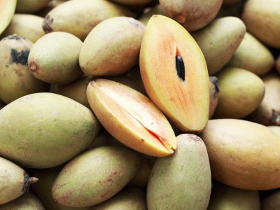 Try sapodilla in Phuket