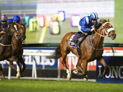 Enjoy the Dubai World Cup in Dubai