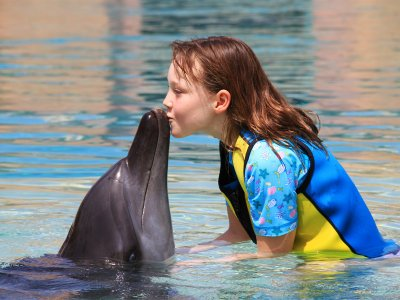 Swim with Dolphins in Dubai
