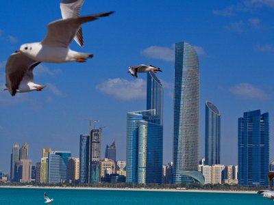 Feed seagulls at the gulf coast in Abu Dhabi
