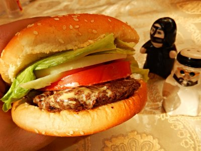 Taste a camel burger – a sandwich with camel meat in Dubai