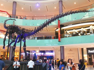 See a skeleton of a gigantic 150,000,000-year-old dinosaur in Dubai