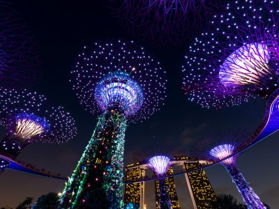 Catch the light and music show in Gardens by the Bay in Singapore