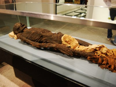 See Egyptian mummies in Milan