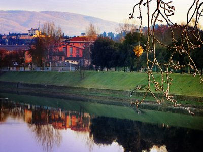 Take a walk in the Cascine Park in Florence